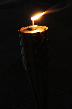 Torch bamboo Stock Photo