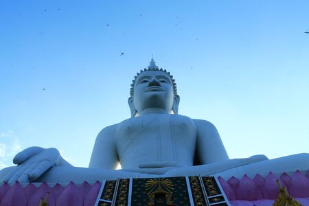 marmorate: Lord budha and dragonfly Stock Photo