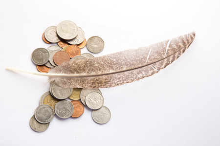 gold en: Feathers and Money with with white ground