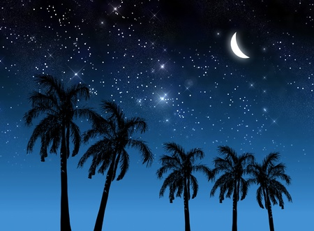 crescent moon: Coconut tree and stars