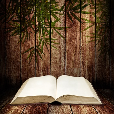 Open book on wooden table with bamboo leves pattern Stock Photo - 12934532