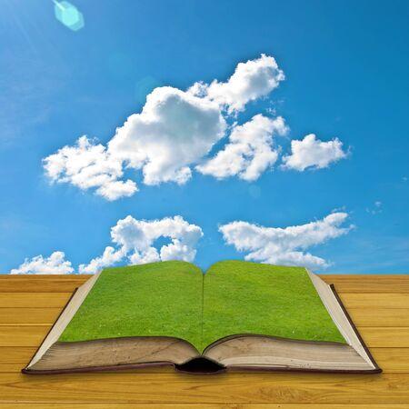 Nyitott könyv a zöld, pihenés fogalmát