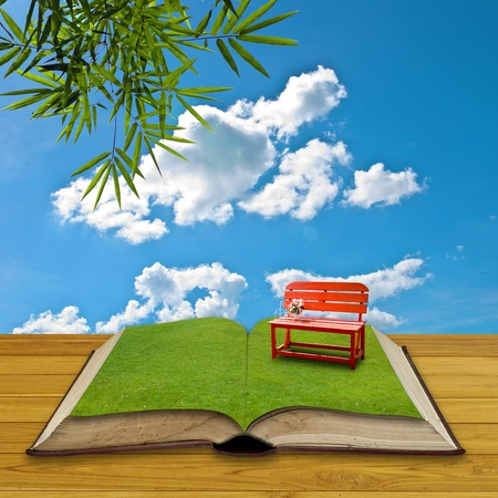 Red chair on grass in the open book, Reading concept photo