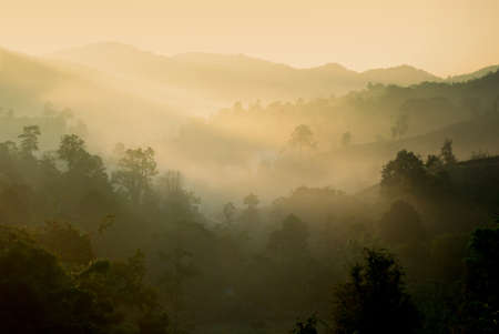 Hill and fog in the morning, Thailand photo