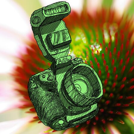 Digital SLR camera sketchs with nice close up flower background Stock Photo - 14395247