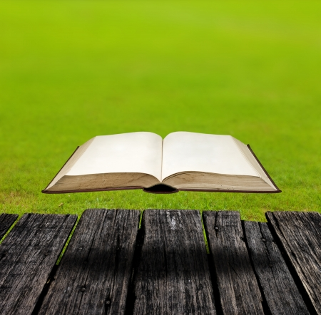 Mystery flying book in the garden Stock Photo - 14568027