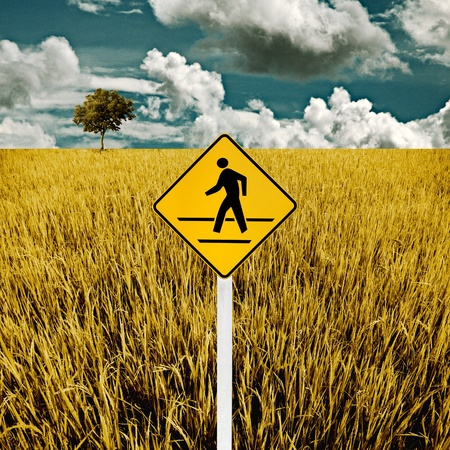 Man cross road sign with golden rice field, Travel concept photo