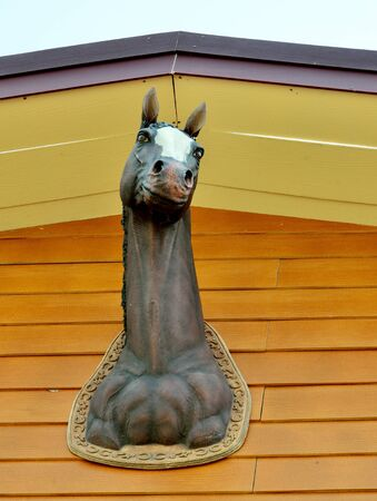 Horse head art at wooden wall surface photo