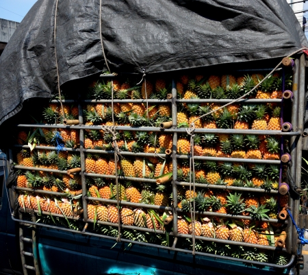 Pineapple in truck, Fruit concept photo