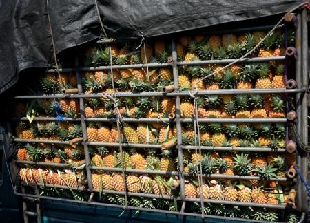 Piña en camión, el concepto de fruta Foto de archivo - 18595556