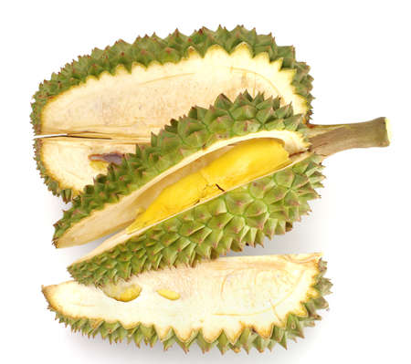 Fresh Durian isolated on white background photo