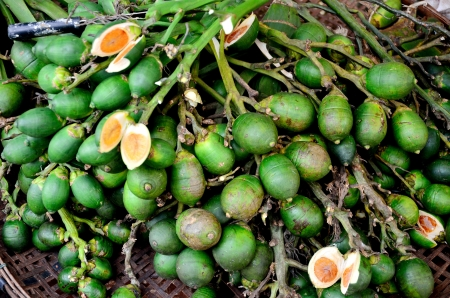 Betel palm nut fruit is in the market photo