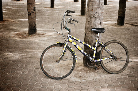 old school bike: Urban bicycle with coconut tree background, Nostalgia concept