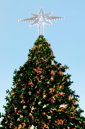 Christmas tree with lighting and ornament