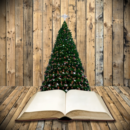 christmas day: Read bible in christmas day Stock Photo