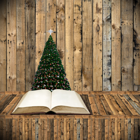 Read bible in Christmas day, Holiday concept photo