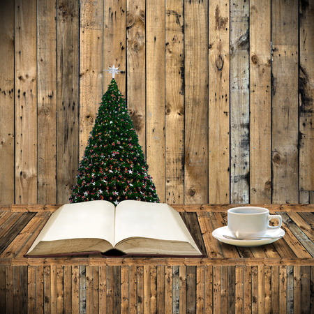 Relax with book in Christmas day photo