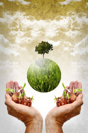 Help the earth by planting tree concept photo