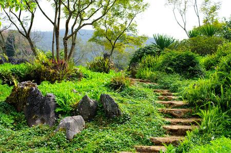 chiangrai: Nice landscape in mountain, Chiangrai, Thailand