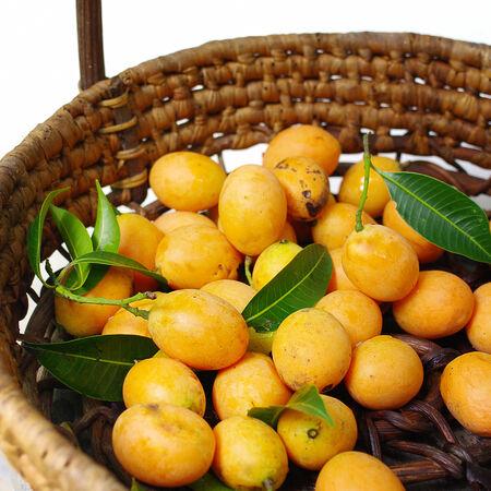 contryside: Exotic Thai Fruit, Marian plum  Stock Photo