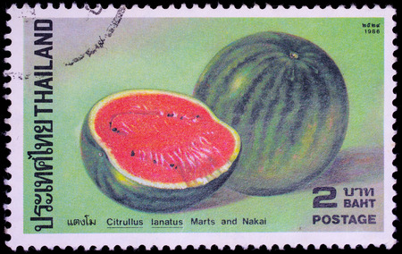 THAILAND - CIRCA 1986 : A stamp printed in Thailand shows image of Watermelon or Citrullus lanatus marts and Nakai, circa 1986