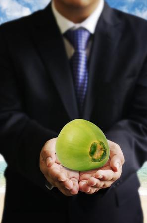 friut: Businessman offer coconut friut