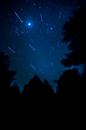 comet: Comet in the sky with tree silhouette