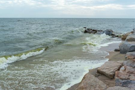 plancton: Las olas del mar con la playa, la proliferación de algas en el mar