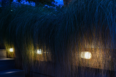 Lighting for step and decorate garden