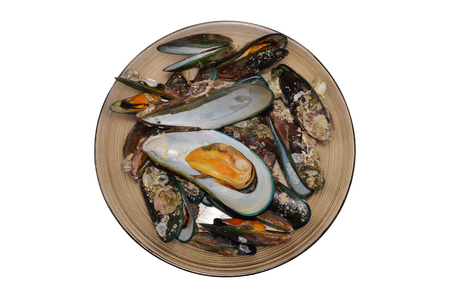 Green mussel seashell in dish isolated with top view Imagens