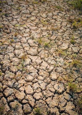 Cracked land background with grass, Drought concept Reklamní fotografie