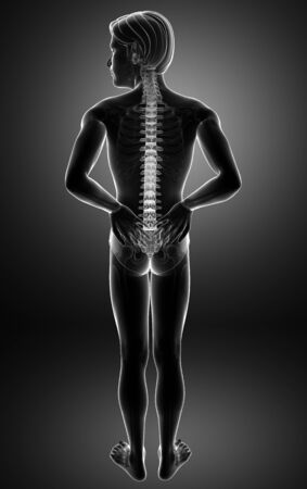3D Illustration of male Feeling the back pain