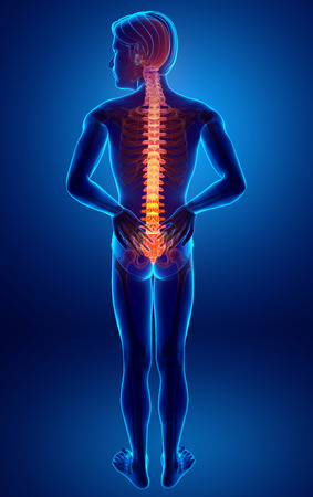 hilight: 3D Illustration of male Feeling the back pain