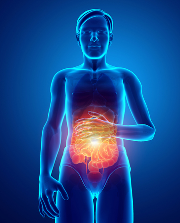 3d Illustration of Male Feeling the Stomachache