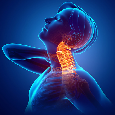 one person only: 3d Illustration of men Feeling the Neck Pain