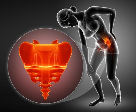 Illustration 3D de la douleur osseuse du sacrum Banque d'images - 73769500