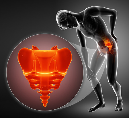 3d illustration of sacrum bone pain