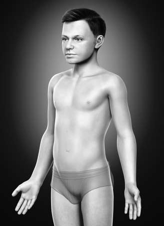 3d rendered illustration of the young boy body 스톡 콘텐츠