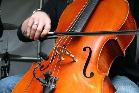 double bass photo