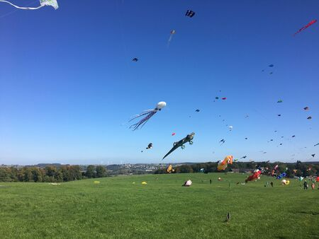 Colorful wind birds at the kite festival in Menden in Sauerland