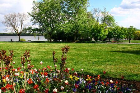 Spring in a park near Washington