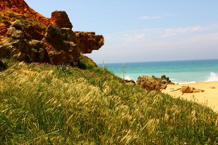 Rocks on the beach of Chiclana de la Frontera Stockfoto