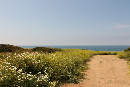 Spring on the Atlantic coast in Andalusia