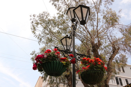 Hanging pots on a street lamp in the center of Gibraltar Фото со стока