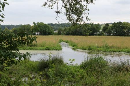The nature reserve Kiebitzwiese in Fr?ndenberg 스톡 콘텐츠