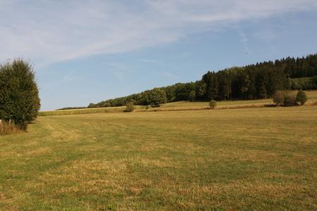 Midsummer in the Sauerland