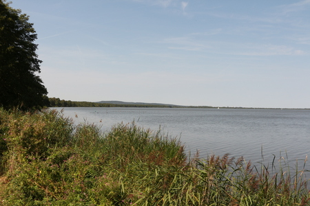 View over the Steinhuder Meer 版權商用圖片