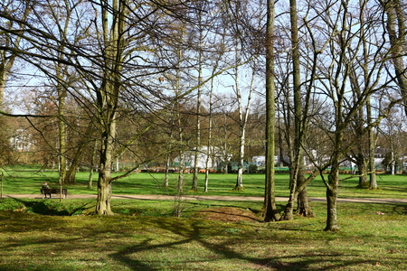 In the spa park of Bad Homburg in Hesse