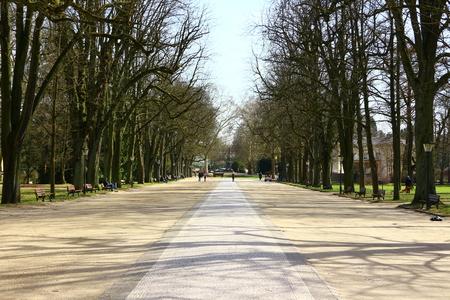 Tree avenue in the spa park of Bad Homburg in Hesse Stock fotó