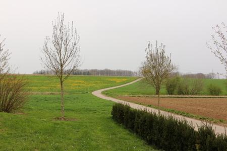 Harmonious spring landscape in Bad Rappenau